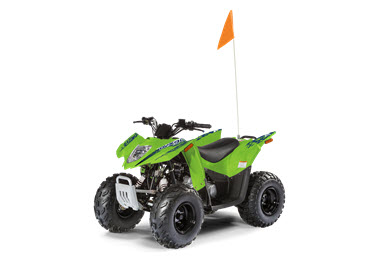 Arctic Cat Alterra DVX90 2019