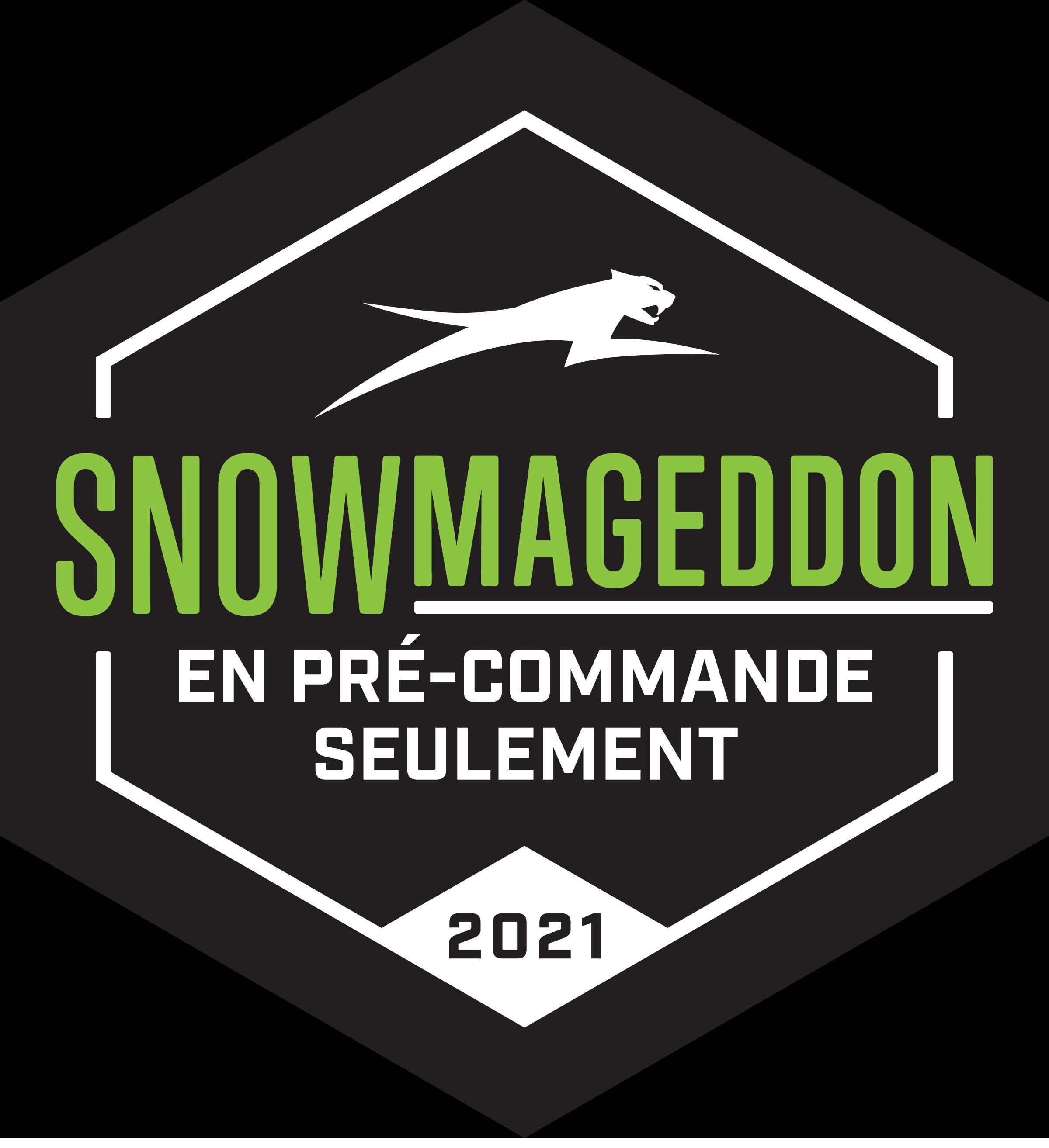 Snowmageddon 2021